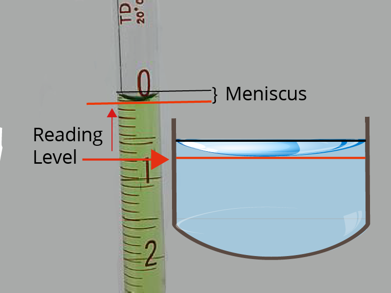 An image of a miniscus viewed through a pipette